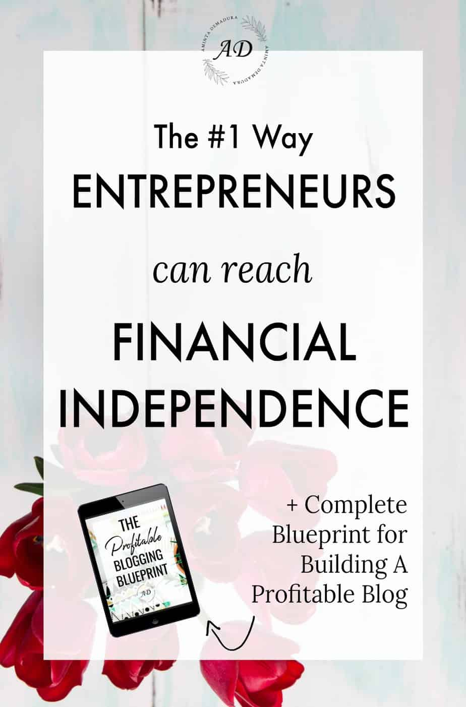 entrepreneurs reach financial independence