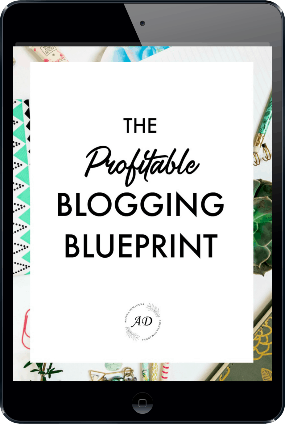 New Profitable Blogging Blueprint